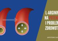 L-Arginina: działanie, właściwości i dawkowanie na potencję. Dlaczego warto znać ten aminokwas?